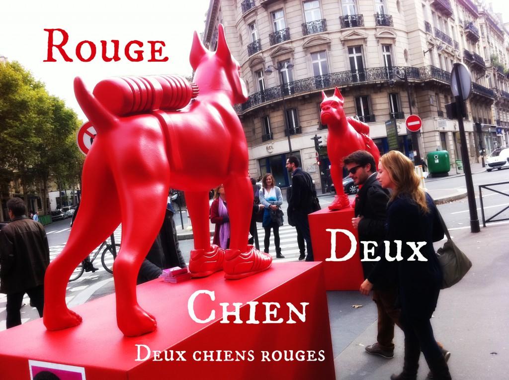 Deux chiens rouges